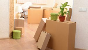 Local Moving Service In Gurgaon