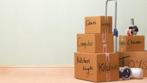Packers and Movers Sector 24 Gurgaon