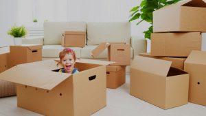 Packers and Movers Sector 12 Gurgaon