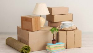 Packers and Movers Sector 13 Gurgaon