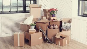 Packers and Movers Sector 14 Gurgaon