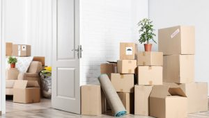 Packers and Movers Sector 15 Gurgaon