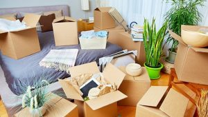 Packers and Movers Sector 18 Gurgaon