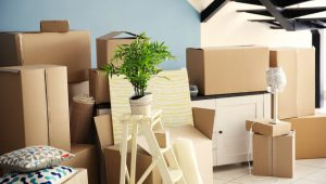 Packers and Movers Sector 37 Gurgaon