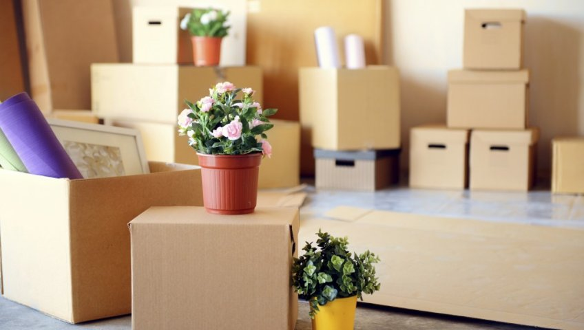 HouseholdPacking Service In Gurgaon